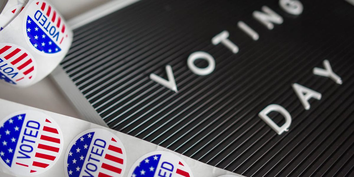 Election Day: Thursday is special primary election for Tennessee State Senate District 32