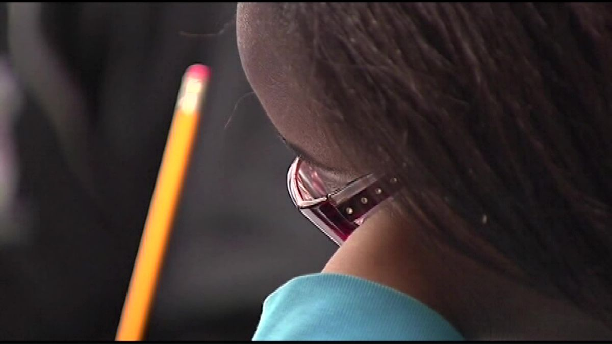 Education commissioner reviewing TNReady testing
