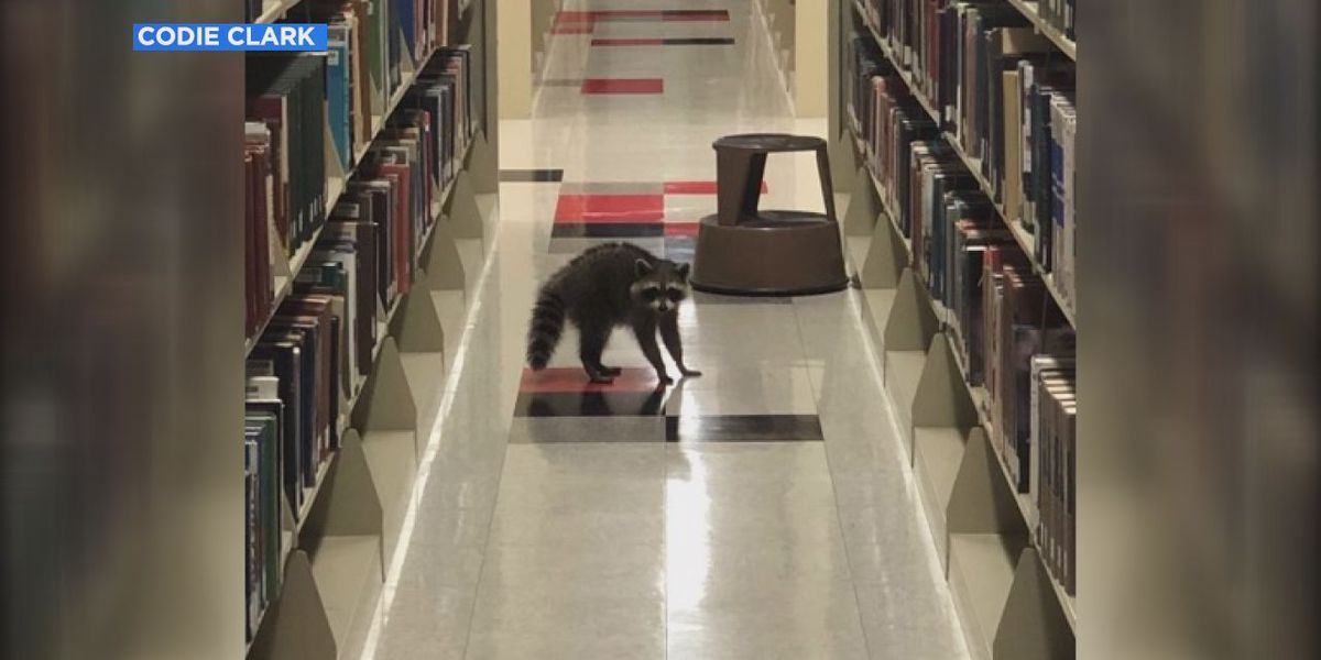 Surprise visitors take over Arkansas State Library