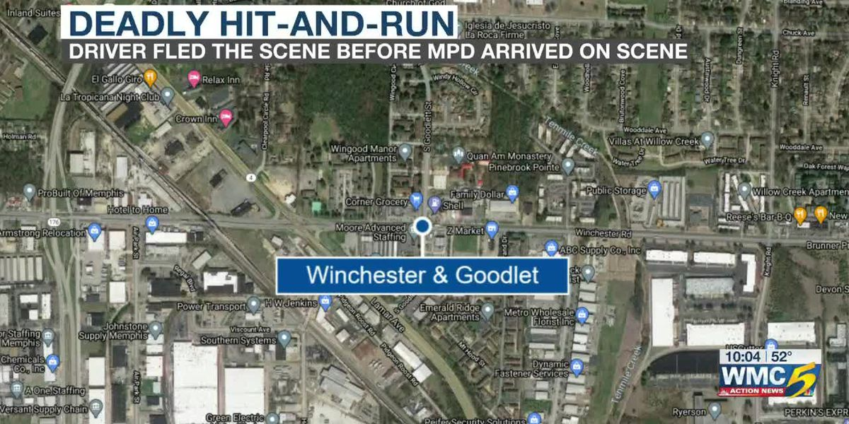 Fatal hit and run on Winchester