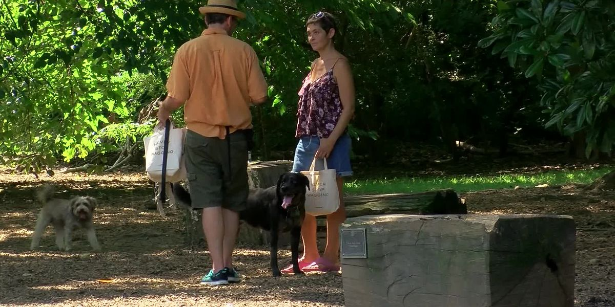 Overton Park receives $25K donation to address drainage issues at dog park