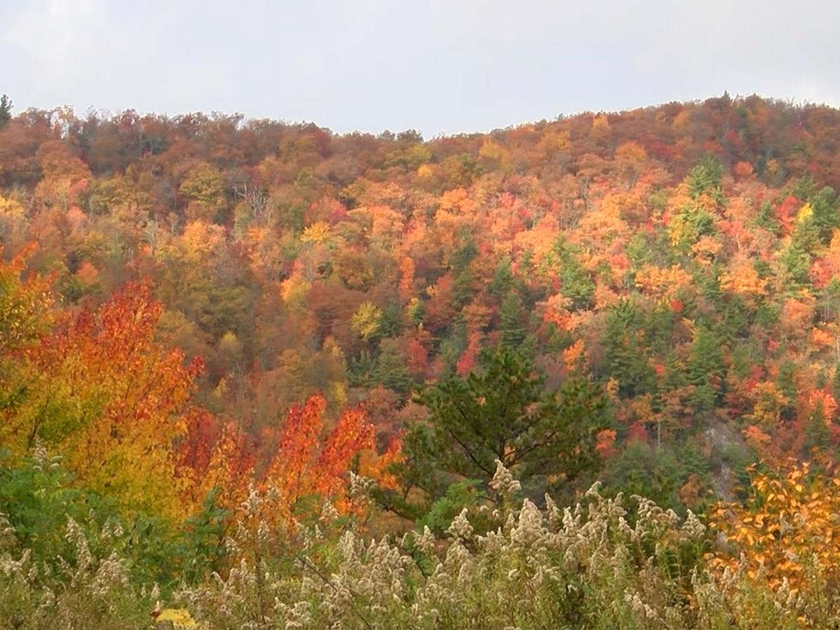 Breakdown: Fall is here! Why we're changing seasons again.