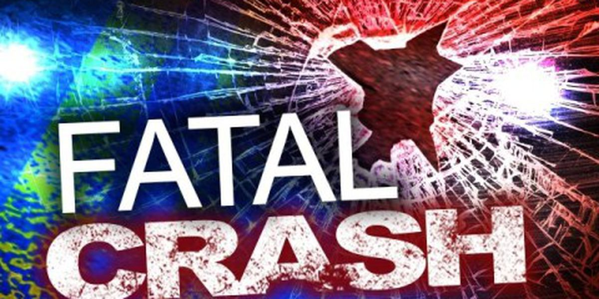 Drivers identified after deadly overnight crash in Memphis