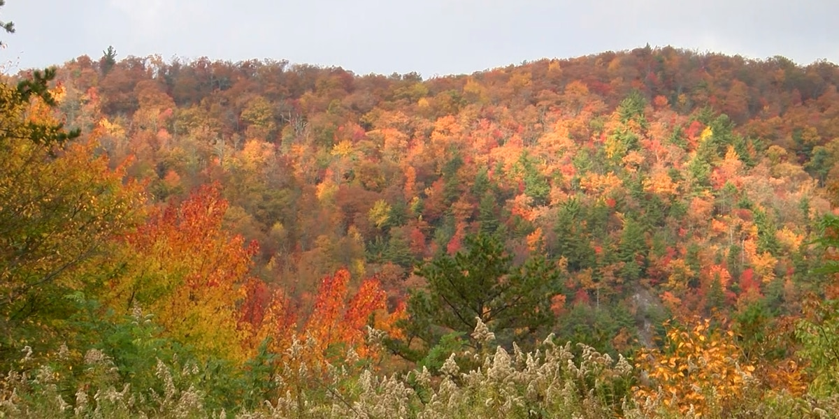 Breakdown: Fall is here! Why we're changing seasons again.