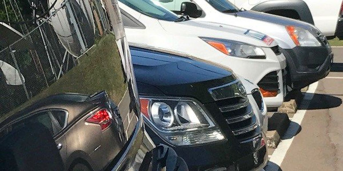 Report: Your credit score affects your auto insurance costs