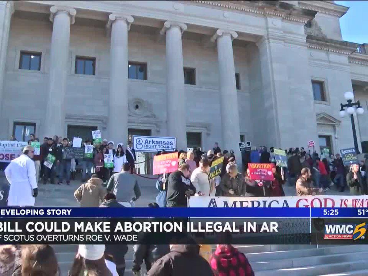 Arkansas lawmaker proposes abortion ban