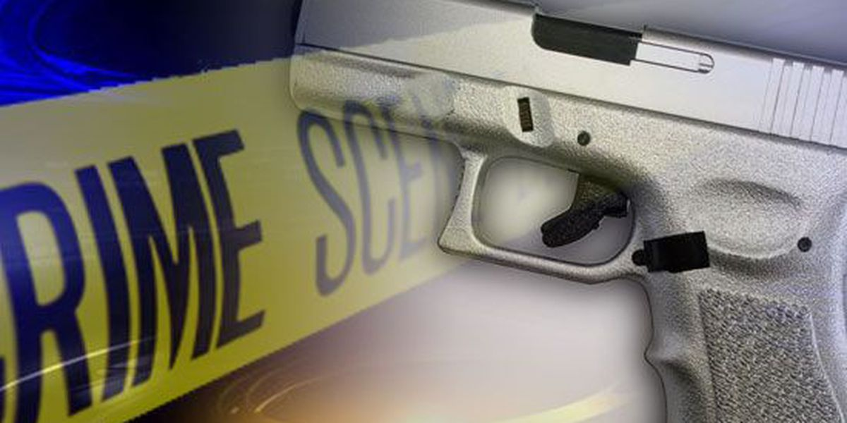 Byhalia police, deputies search for shooting suspect