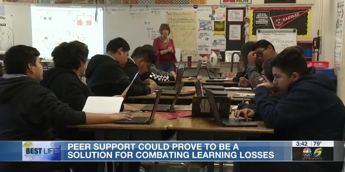 Best Life: Peer support could prove to be a solution for combating learning losses