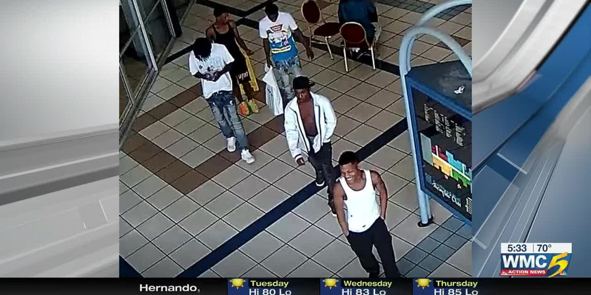 Police release pictures of suspects in armed carjacking