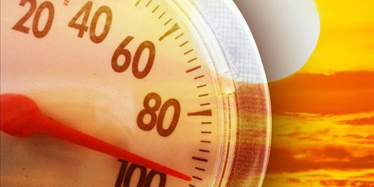 Breakdown: Why our bodies sweat in the heat and humidity