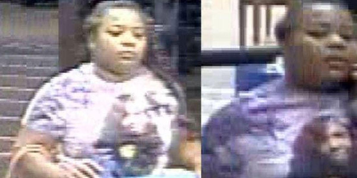 Collierville police search for theft suspect