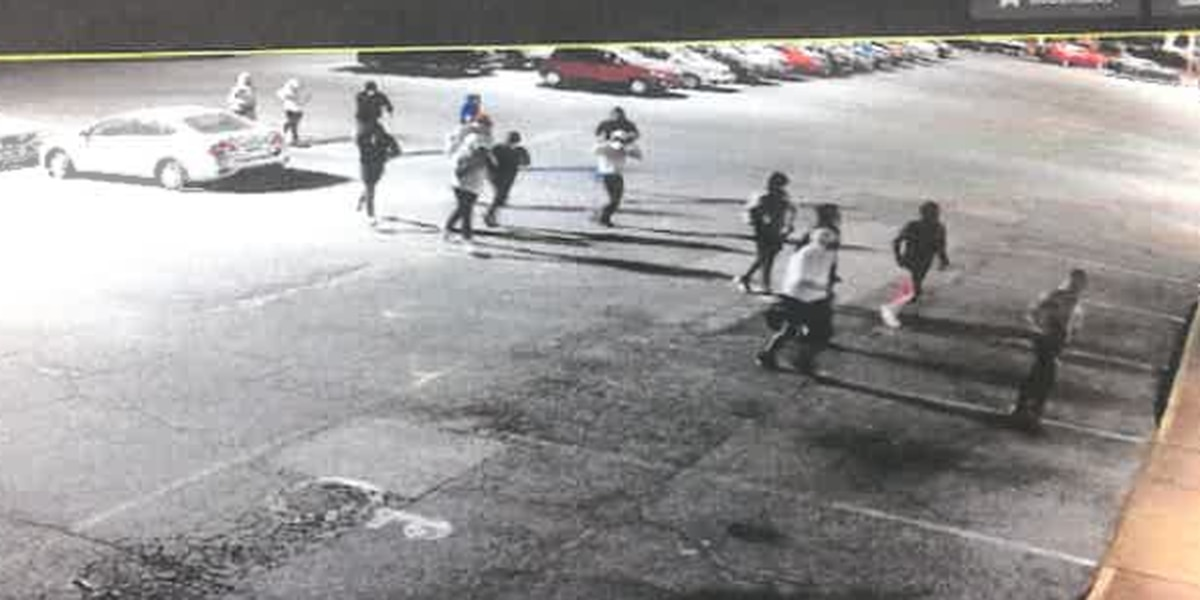 8 Mid-South auto dealerships hit by car theft ring