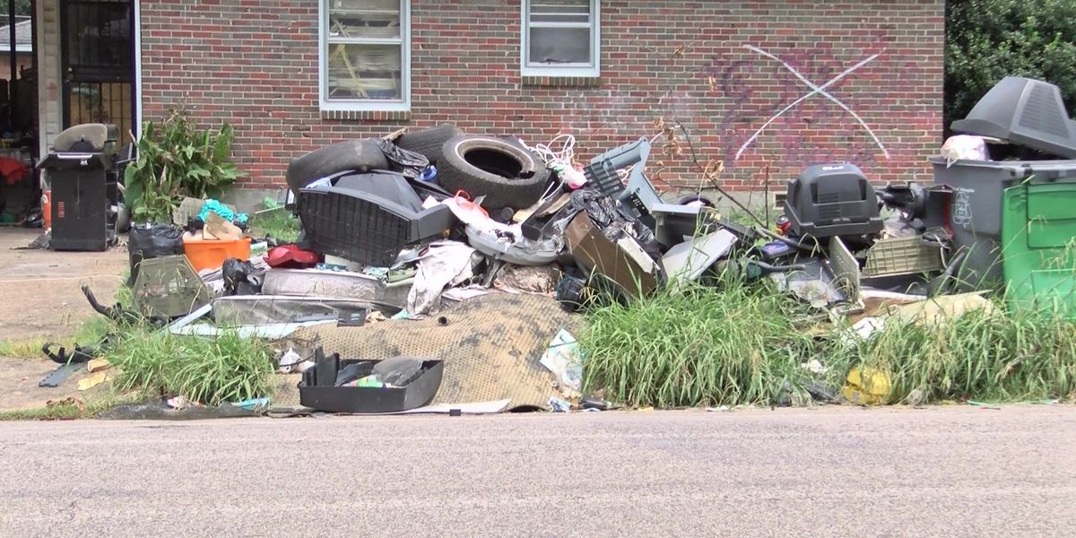 Judge orders squatter out of Memphis 'junkyard house'