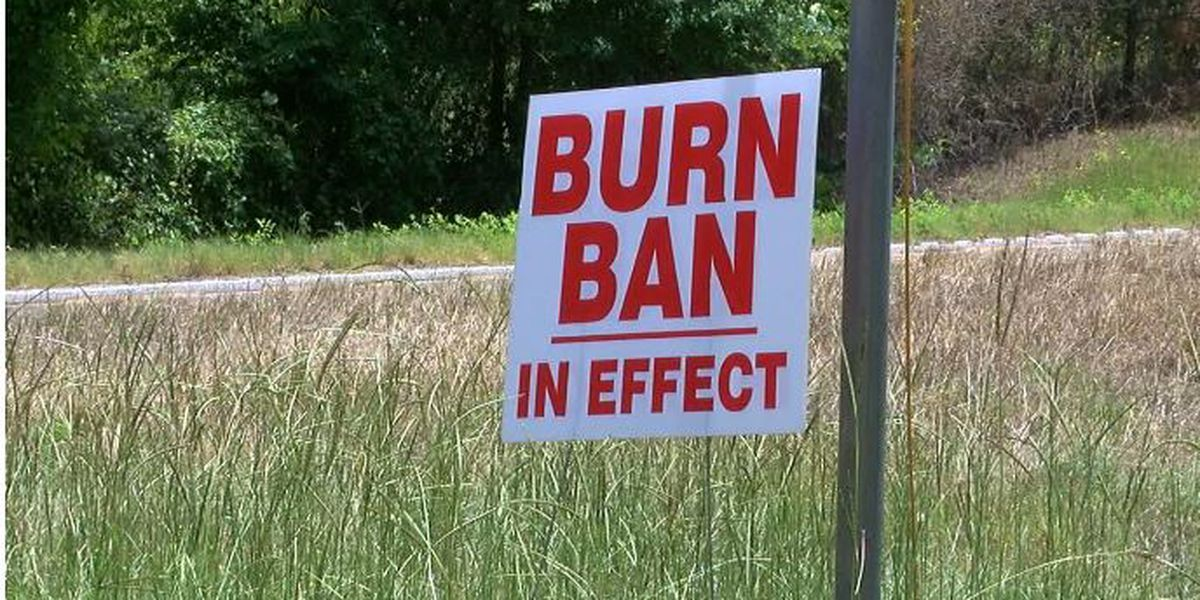Breakdown: Why burn bans are issued