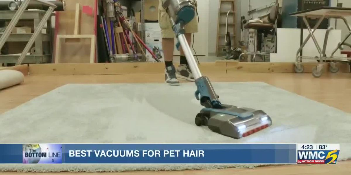 Bottom Line: Best vacuums for pet hair