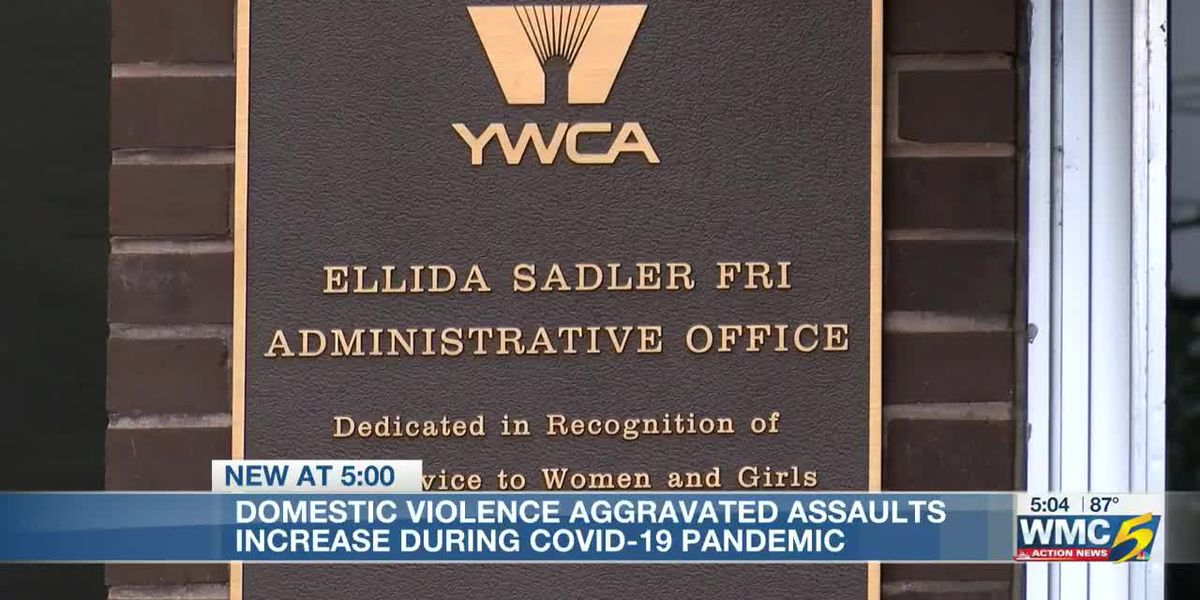 Domestic violence reports spike during pandemic
