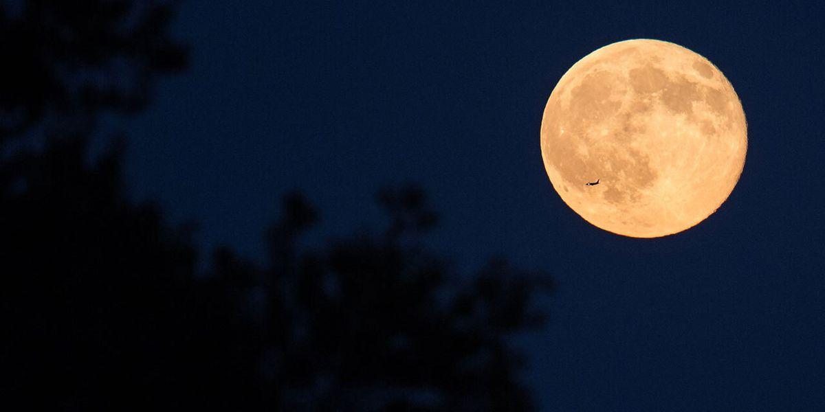 January's full wolf moon rises Thursday