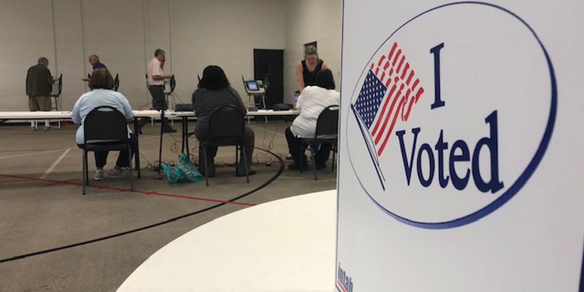 Mayoral race, tax increase top issues for election day