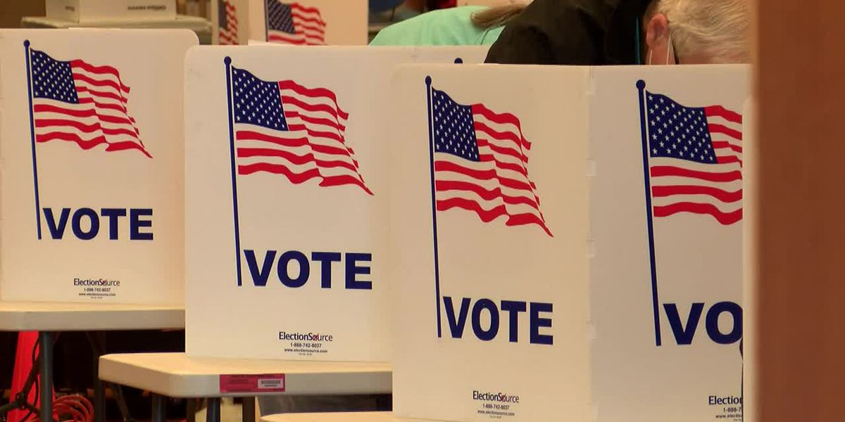 Data shows more than 1 million Tennessee voters have cast ballots during early voting period