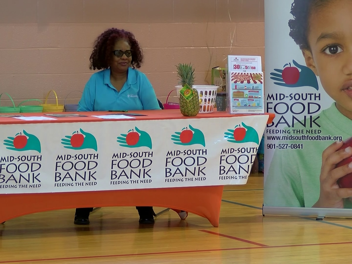 Orange Mound hosts 2nd annual health fair