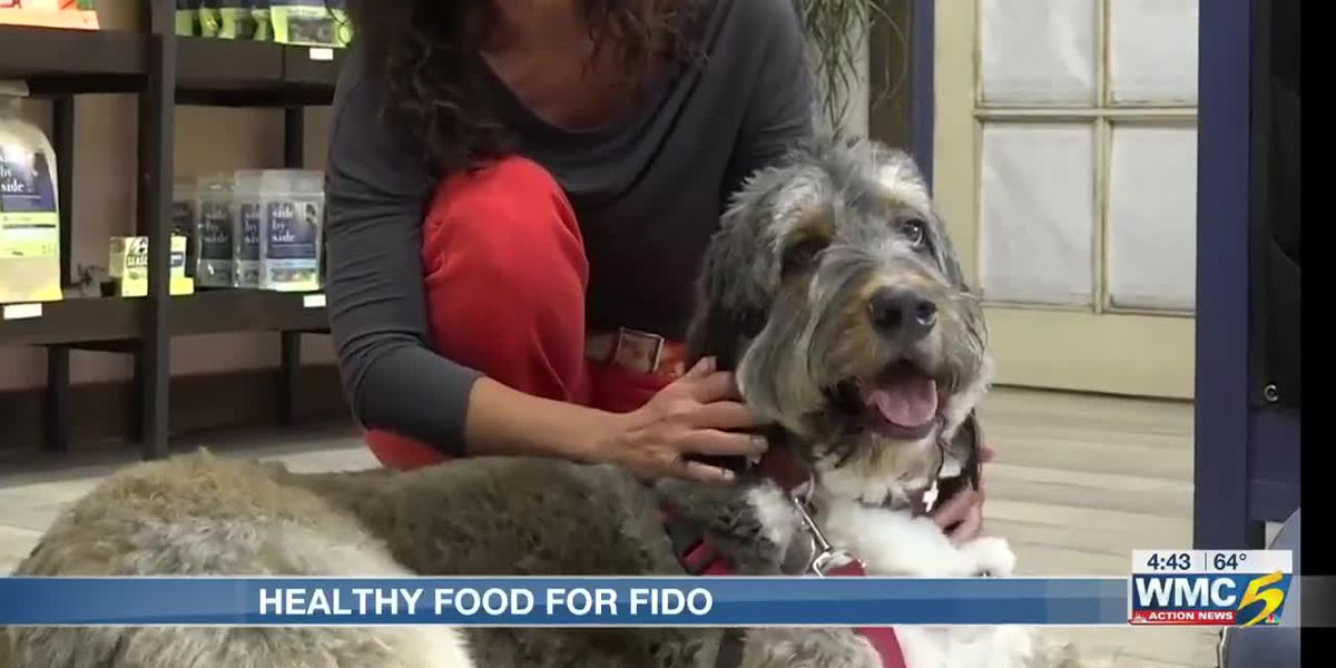 Best Life: Healthy foods for Fido