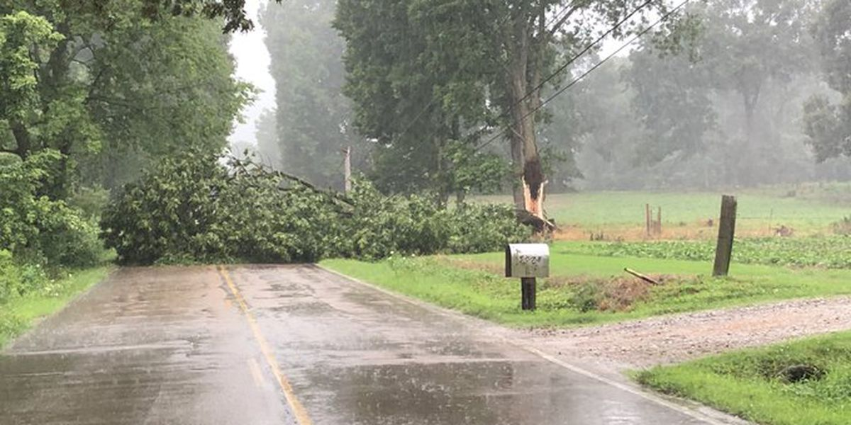 Thousands without power after storms down lines and trees across Shelby County