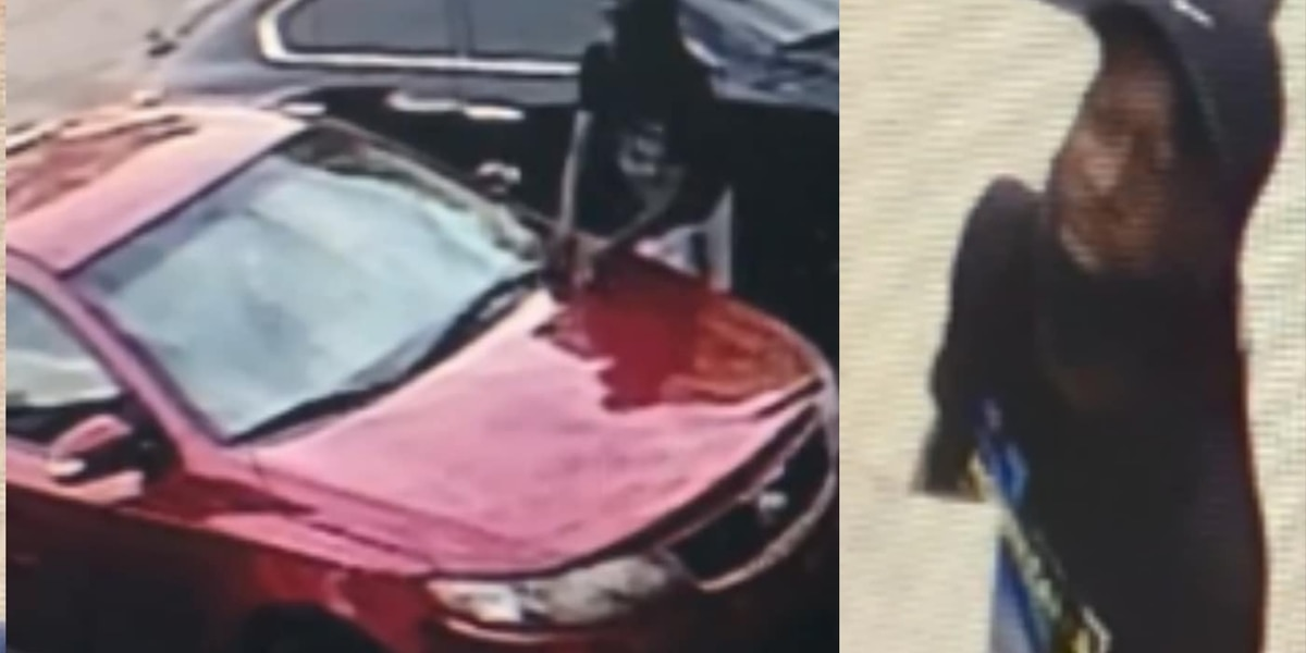 Police search for suspect accused of assaulting Boost Mobile employee