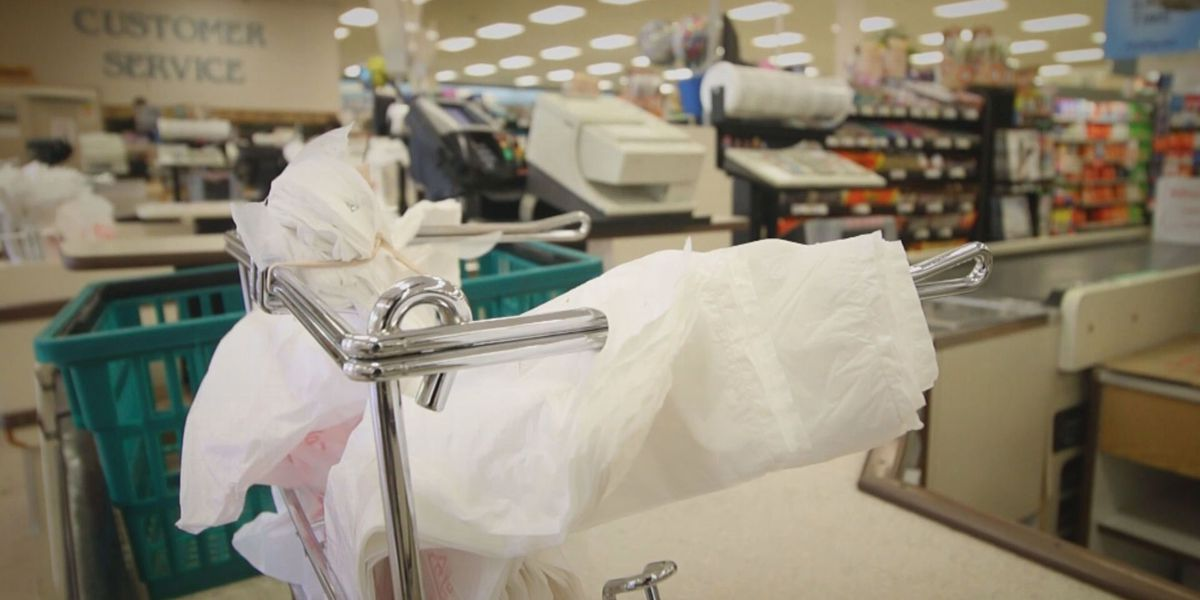 TN lawmakers look to prevent ban of plastic bags
