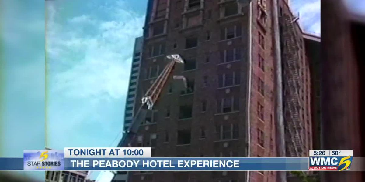 5 Star Stories: The Peabody Hotel experience