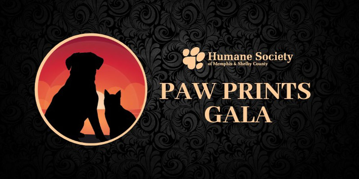 Humane Society of Memphis & Shelby County gears up for 'largest fundraiser of the year'