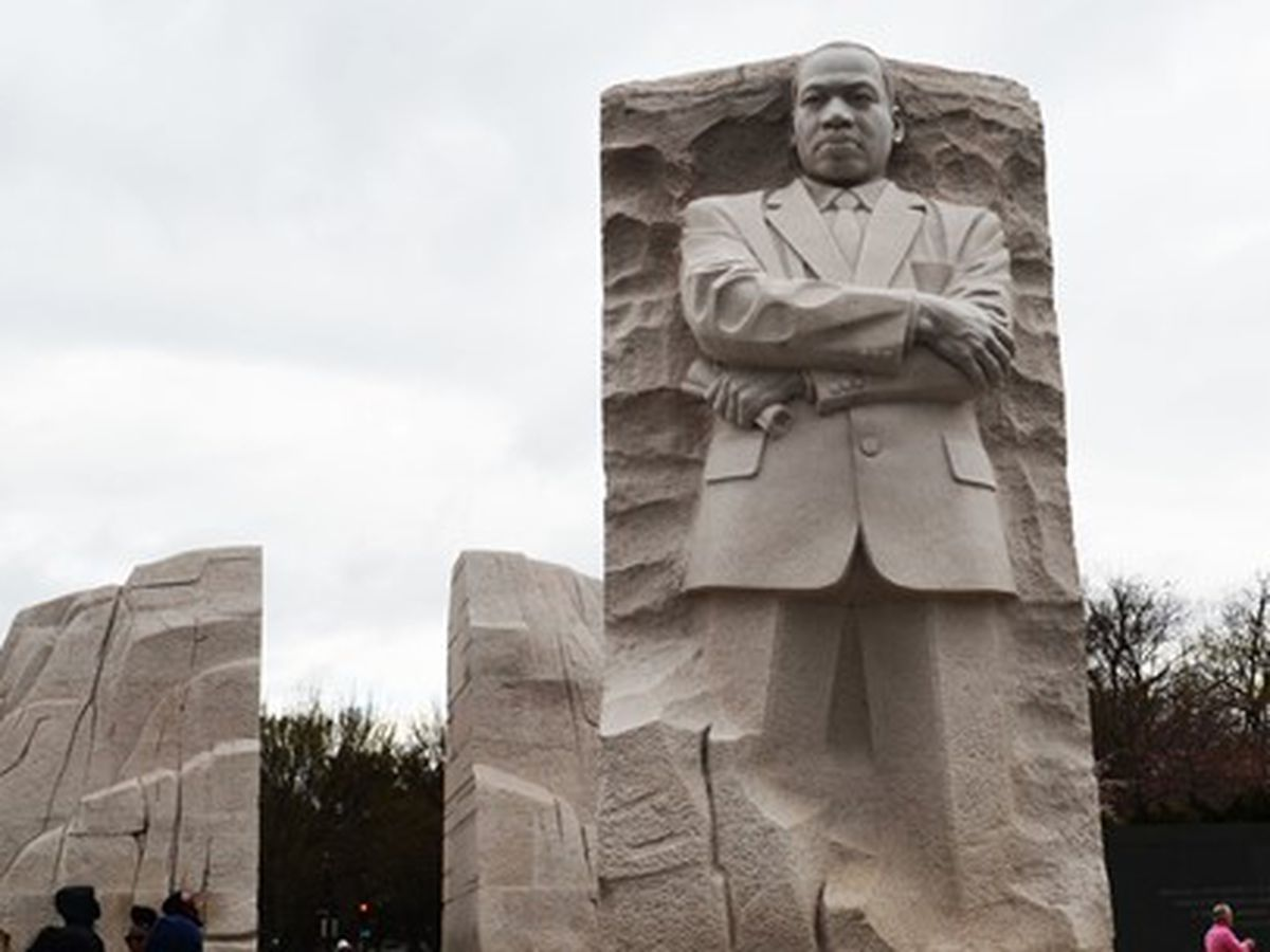 MLK Day of Service takes new forum during pandemic