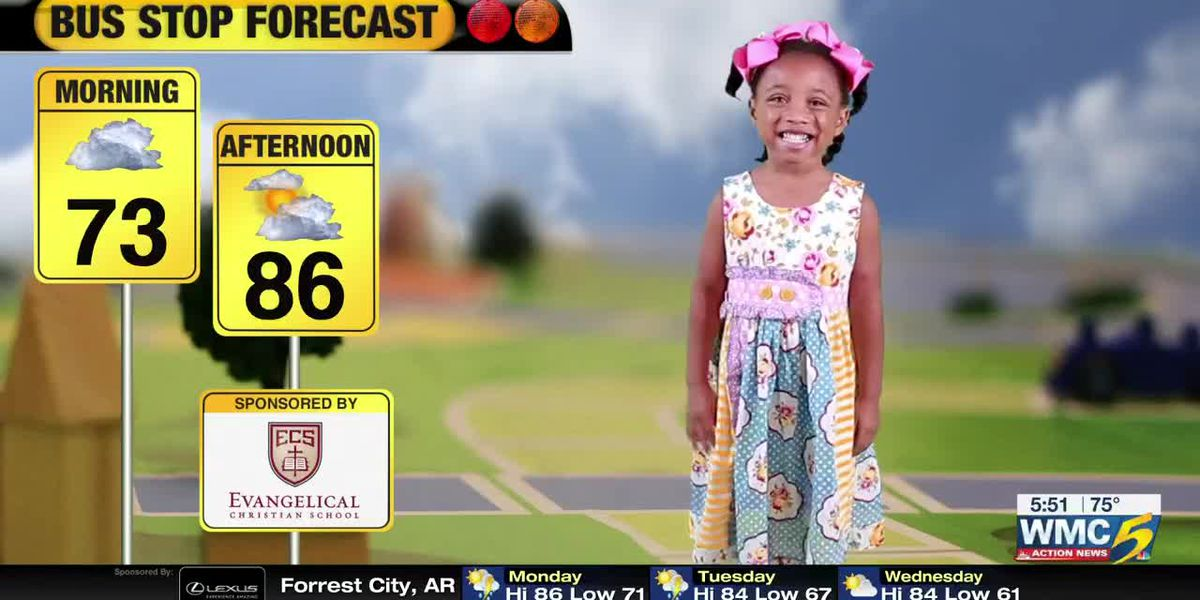 August 26, 2019 bus stop forecast