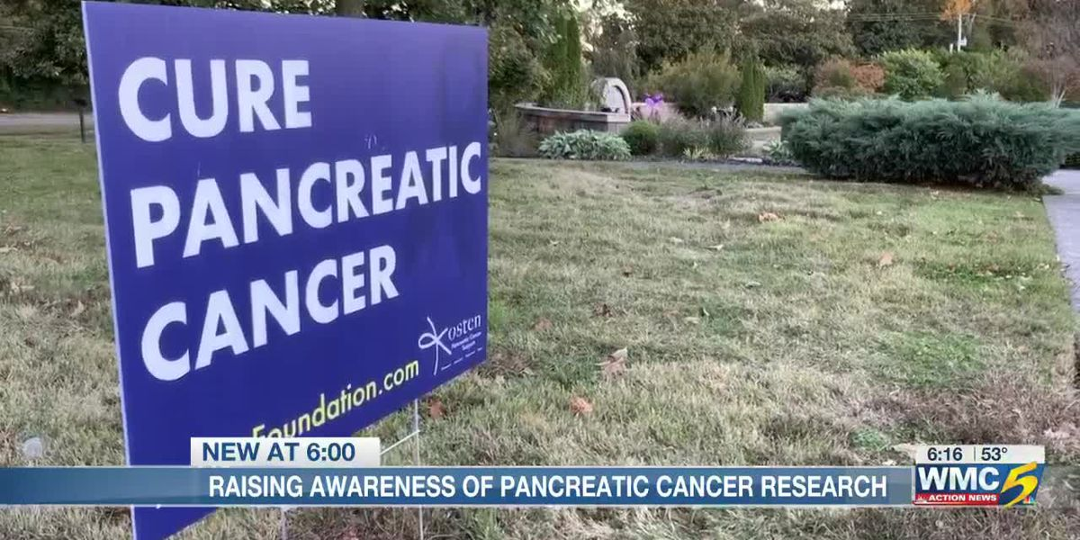Raising awareness of pancreatic cancer research