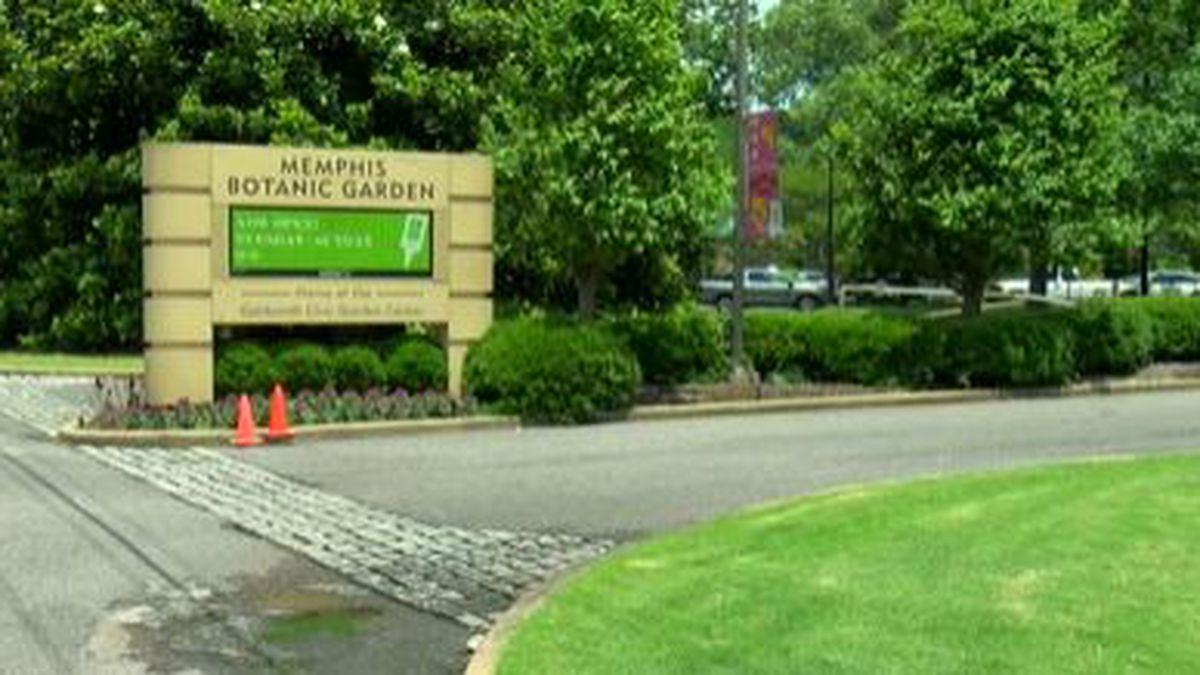 Live music returns to Memphis Botanic Garden's Radians Amphitheater this weekend
