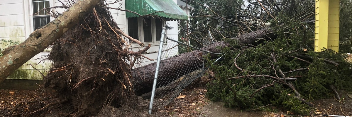 9 tornadoes hit the Mid-South during Saturday's storms, according to the National Weather Service