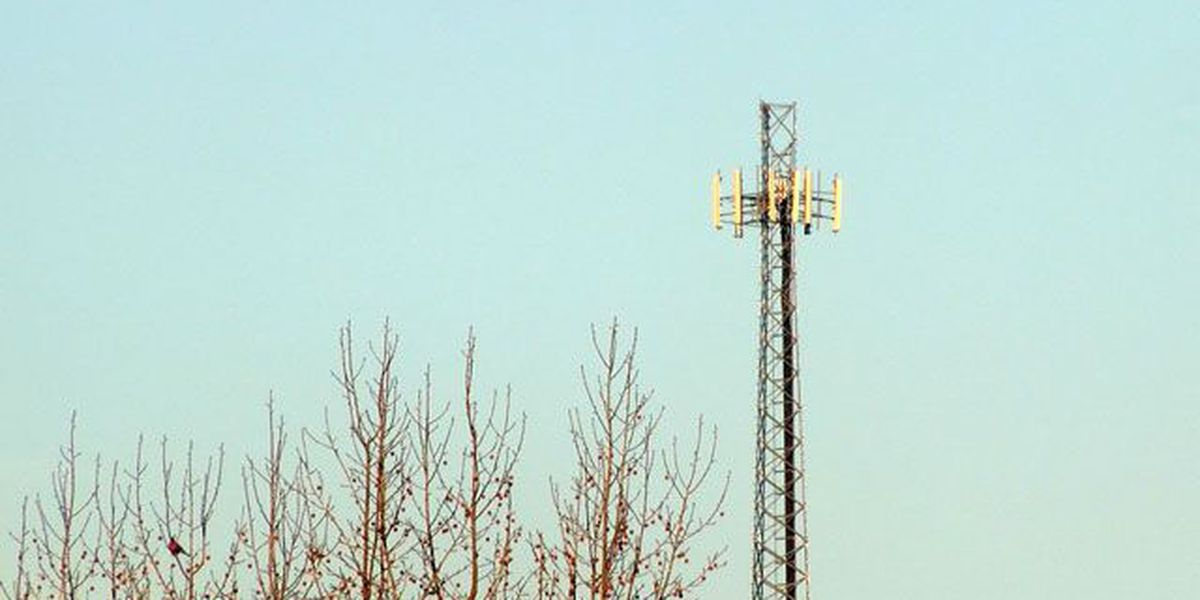 Cell phone tower outside Dogwood Elementary approved during virtual meeting