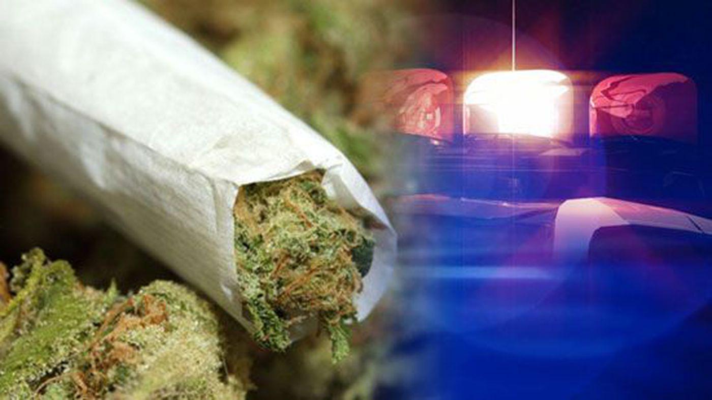 Collierville Drug Bust