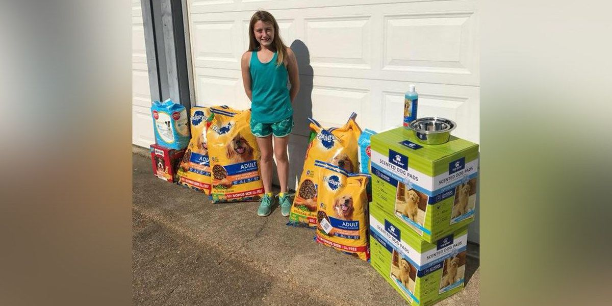 Girl, 12, forgoes birthday presents to help animal shelter