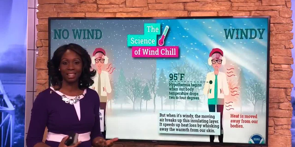 Breakdown: Wind chill