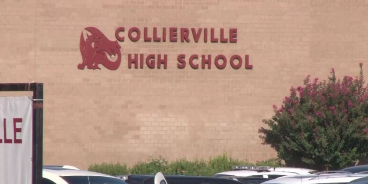 Collierville students score perfect 36 on ACT