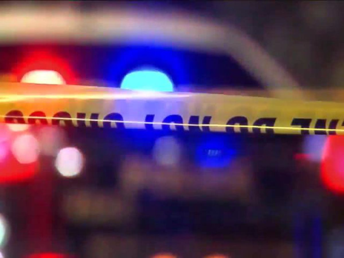 Two men on the run after shooting in Orange Mound