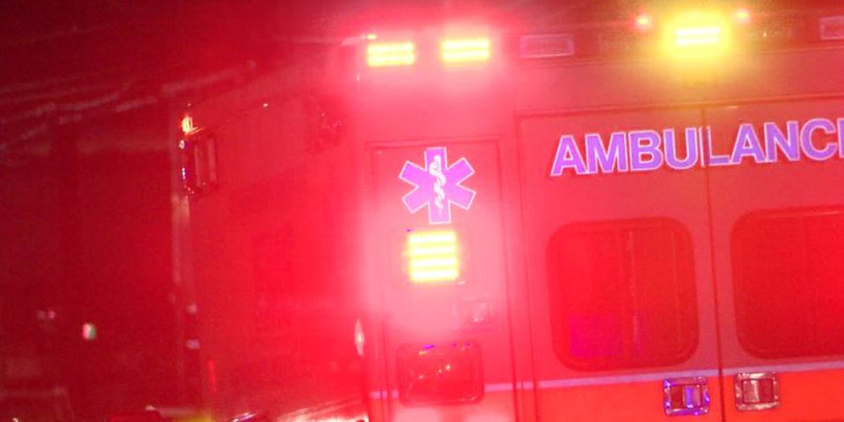 MPD: 56-year-old man hit, killed by vehicle while crossing Lamar Ave.