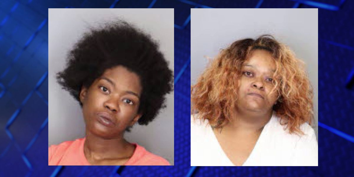 Affidavit: Women arrested for robbery, theft