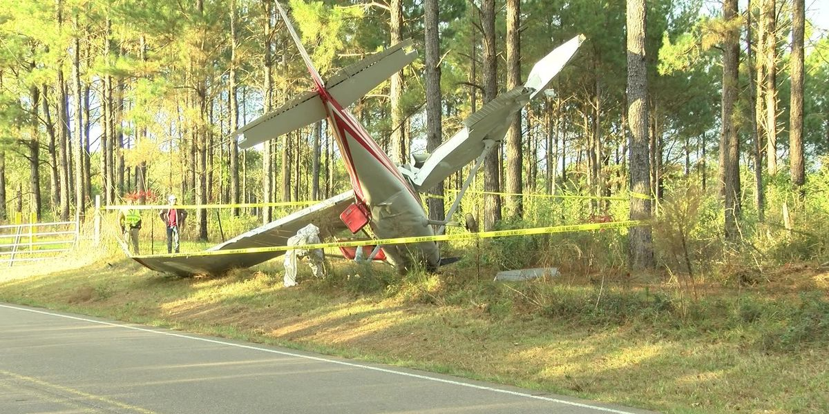 Plane crashes in south MS