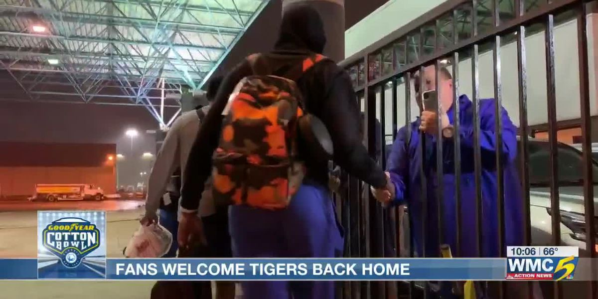 Fans welcome Tigers back home