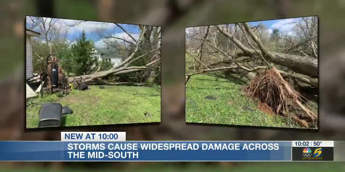 Storm damage reported throughout parts of the Mid-South