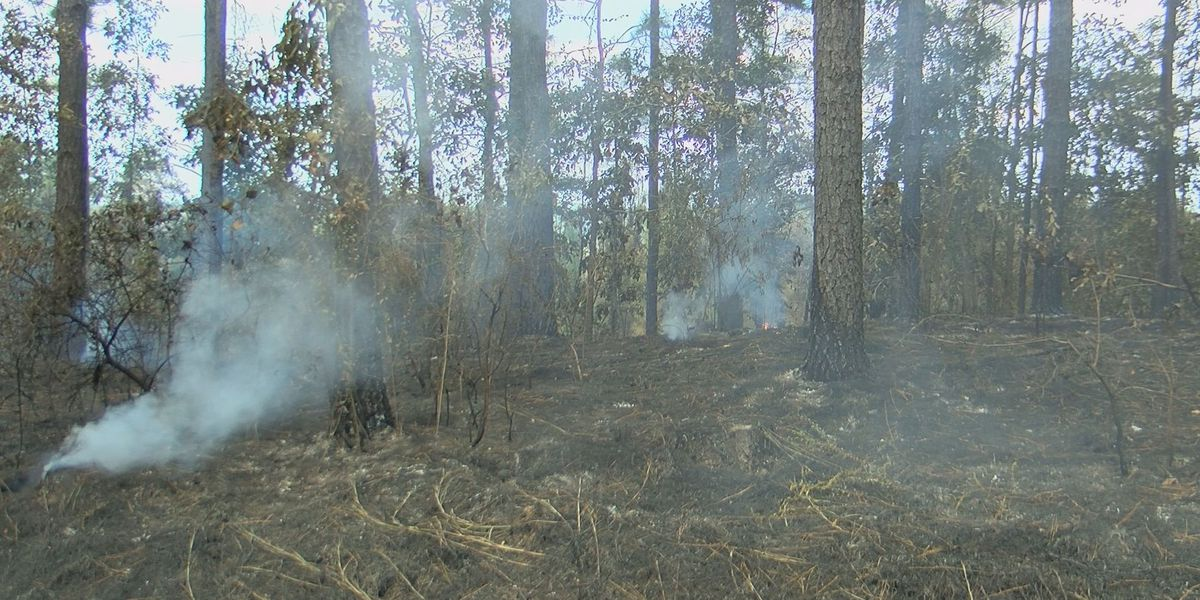 Drought causes several counties in Mississippi to declare burn bans