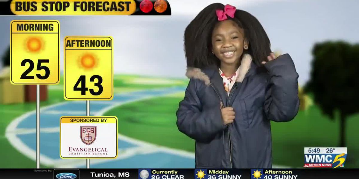 Feb. 21 - Bus Stop Forecast