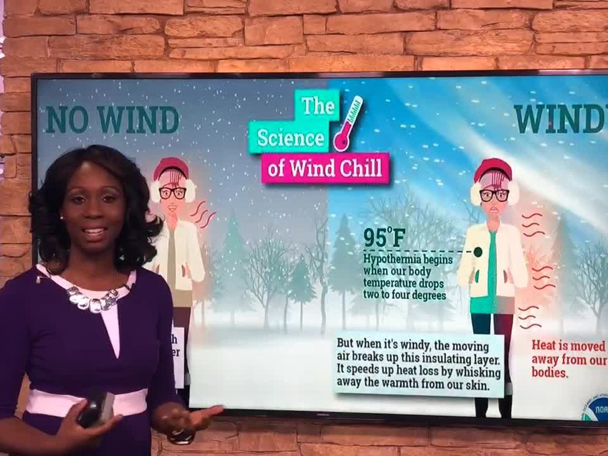 Breakdown: Why it feels so cold when it's windy