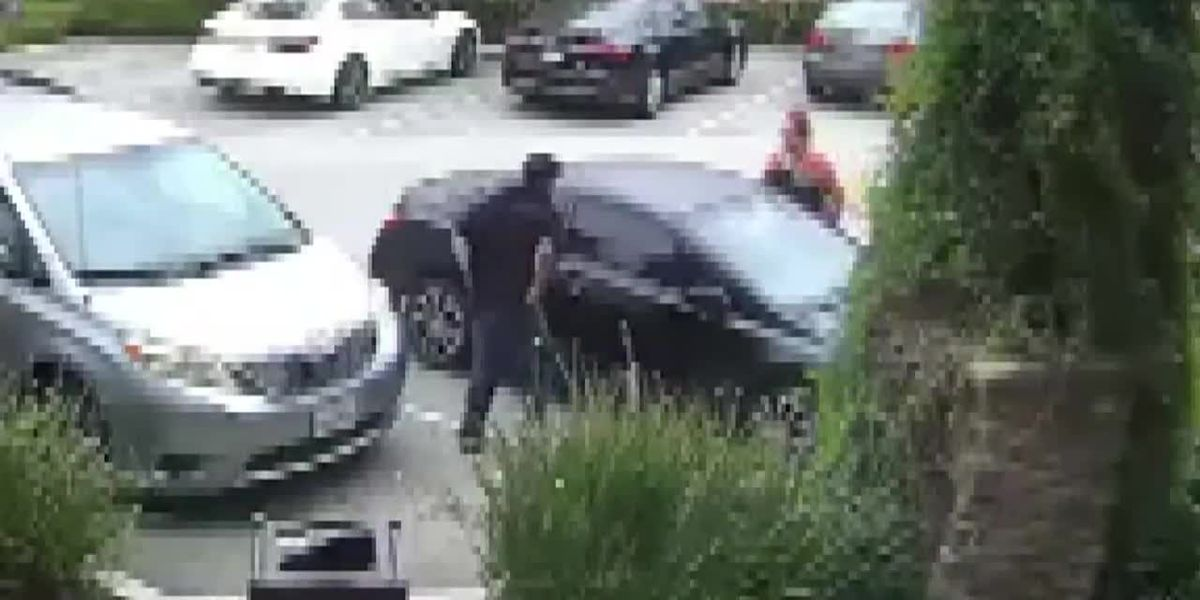 Caught on camera: Mom punches man she caught trying to steal car